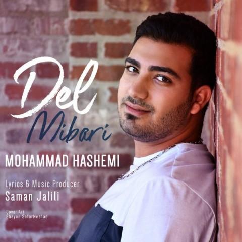 دانلود موزیک جدید محمد هاشمی دل میبری