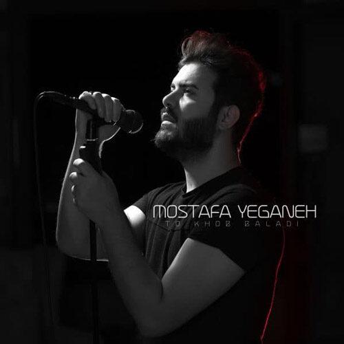 دانلود موزیک جدید مصطفی یگانه تو خوب بلدی