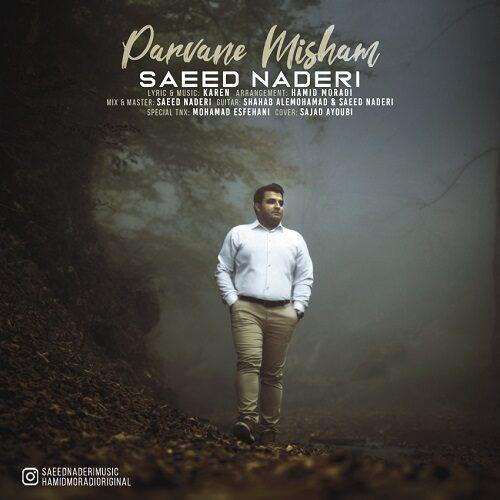 دانلود موزیک جدید سعید نادری پروانه میشم