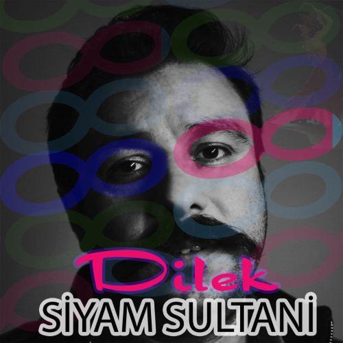 دانلود موزیک جدید سیام سلطانی دیلک