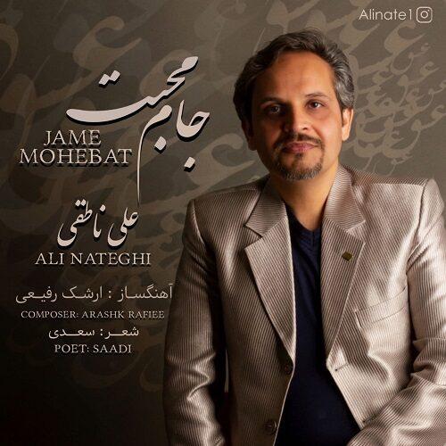 دانلود موزیک جدید علی ناطقی جام محبت