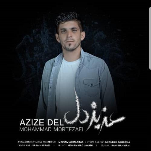 دانلود موزیک جدید محمد مرتضائی عزیز دل